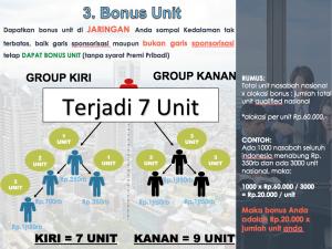 in4link bonus unit